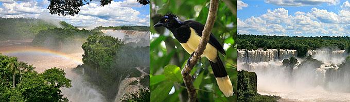 Landschaftsaufnahmen von Brasilien